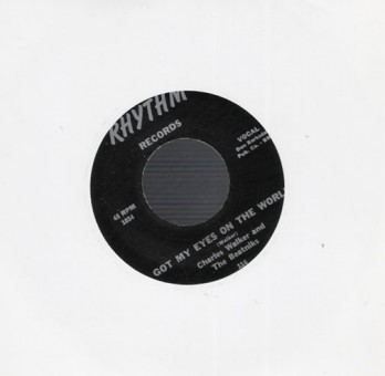 Single - Charles Walker - Got My Eyes On The World, Just Me & You