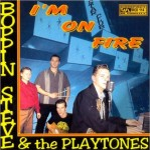 CD - Boppin' Steve & the Playtones - I'm on fire