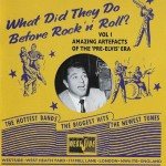 CD - VA - What Did They Do Before Rock'n'Roll?