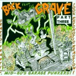 CD - VA - Back From The Grave 3