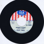 Single - VA - Wiley Terry - Shake It Baby, Miss Ann Littles - I Will Be Got Dog