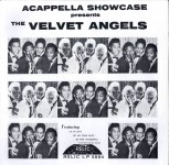 LP - Velvet Angels - Acapella Showcase presents