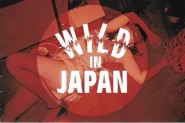CD - VA - Wild In Japan