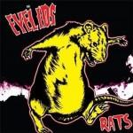 CD - Eyelids - Rats