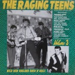 LP - VA - The Raging Teens Vol. 3