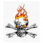 Mighty Texx Aufkleber - Skull On Flames