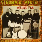LP - VA - Strummin Mental Vol. 5