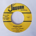 Single - Dorothea Fleming - The Devil Is Mad/ I?m Glad You?re Leaving Me