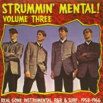 LP - VA - Strummin Mental Vol. 3