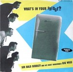 LP - Sir Bald Diddley - What's In Your Fridge?