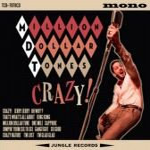 CD - Million Dollar Tones - Crazy