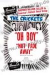 DIN A3 Poster - Crickets - Oh Boy