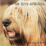 CD - VA - We Bite America - The Collection