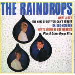 CD - Raindrops - What A Guy