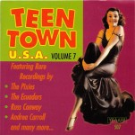 CD - VA - Teen Town USA Vol. 7